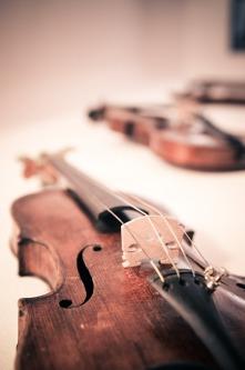violin-338518_1920